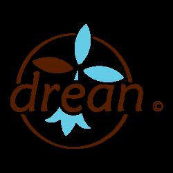 logo-drean